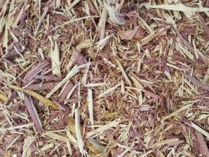 Cedar Mulch, Aromatic Cedar